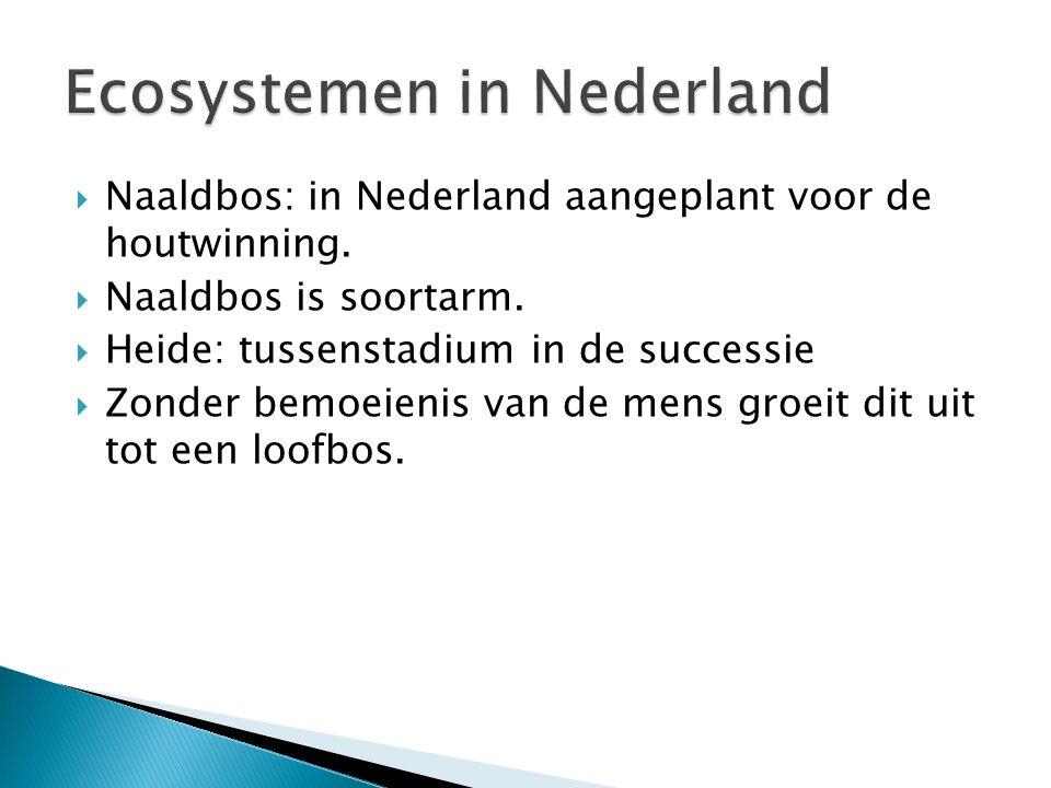 Ecosystemen in Nederland