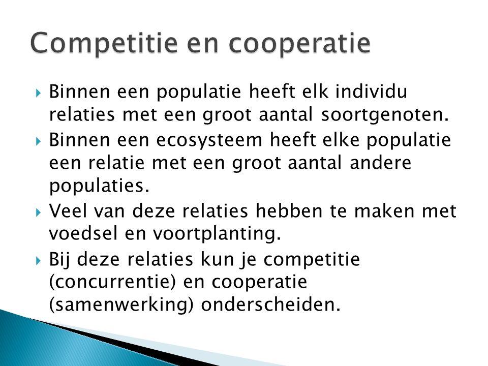 Competitie en cooperatie