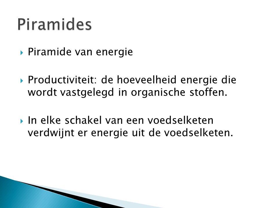 Piramides Piramide van energie