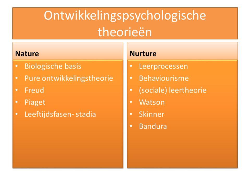 Ontwikkelingspsychologische theorieën