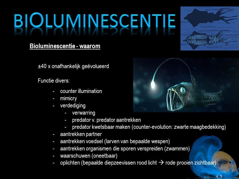 Bioluminescentie Bioluminescentie - waarom