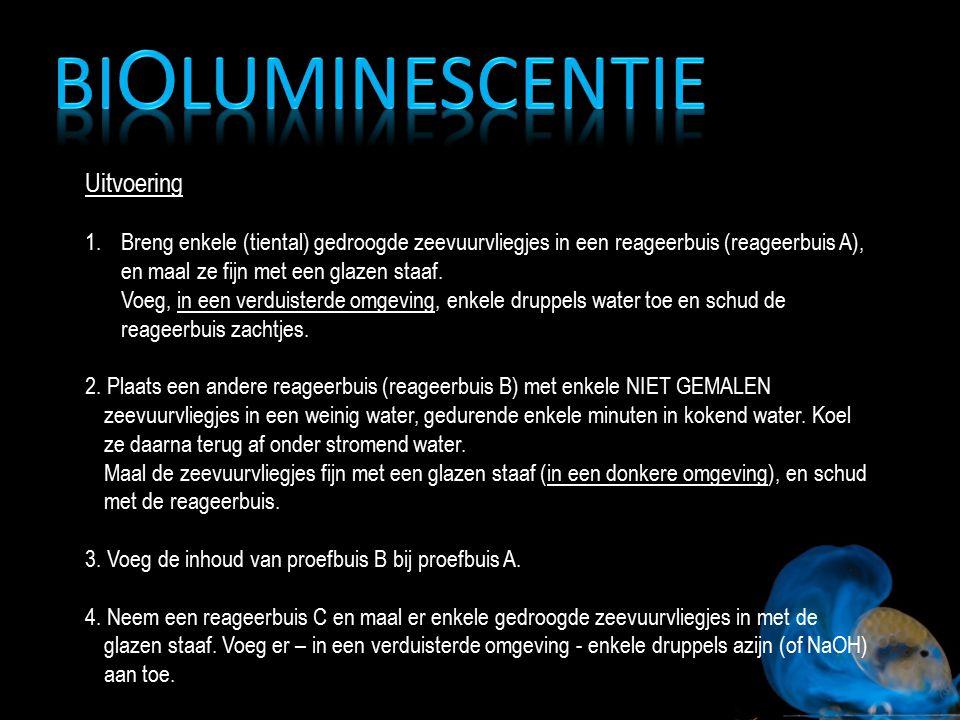 Bioluminescentie Uitvoering
