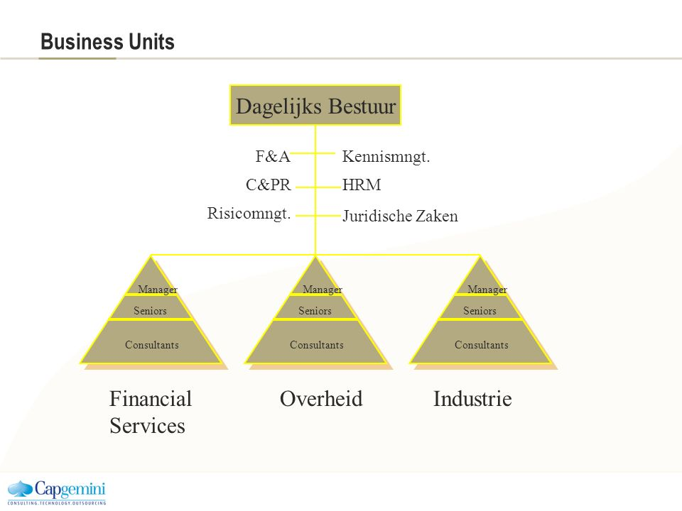 Business Units Dagelijks Bestuur Financial Services Overheid Industrie