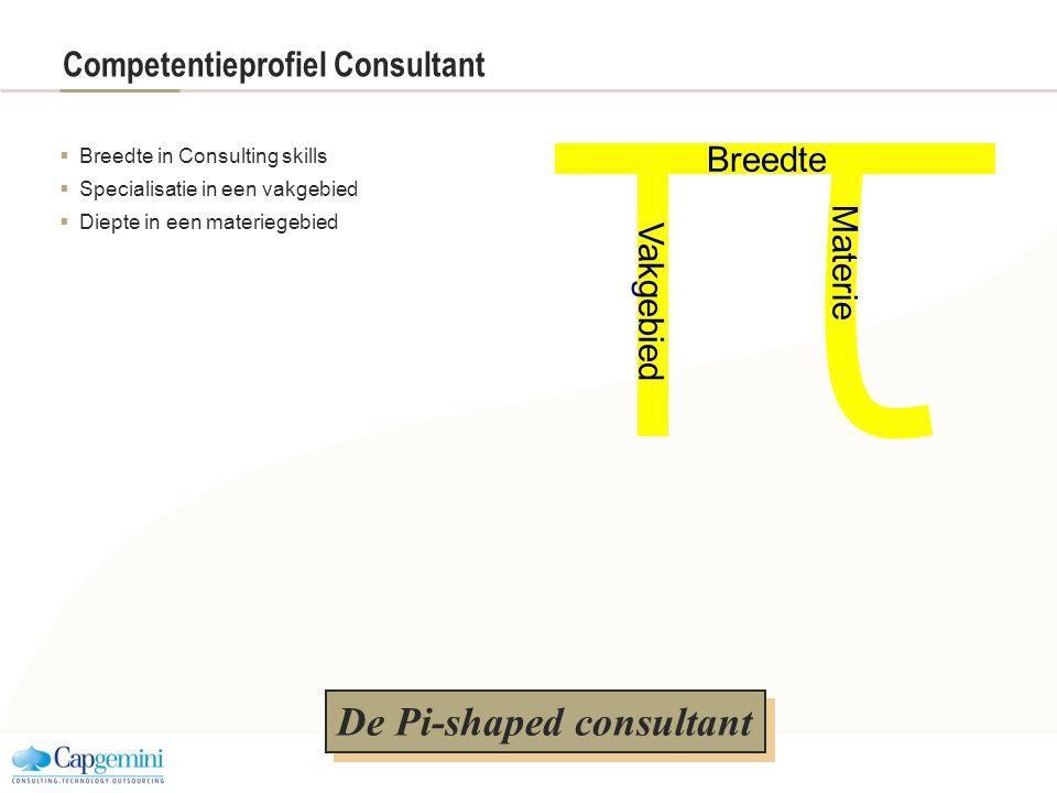 Competentieprofiel Consultant