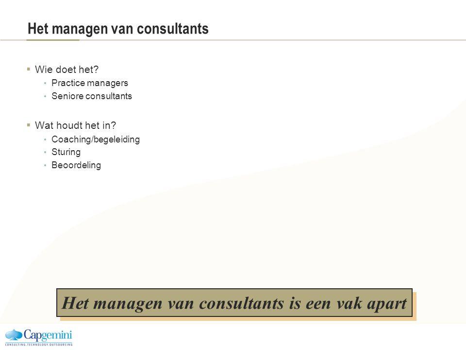 Het managen van consultants