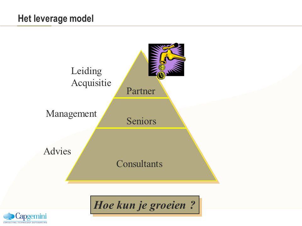 Hoe kun je groeien Het leverage model Leiding Acquisitie Partner