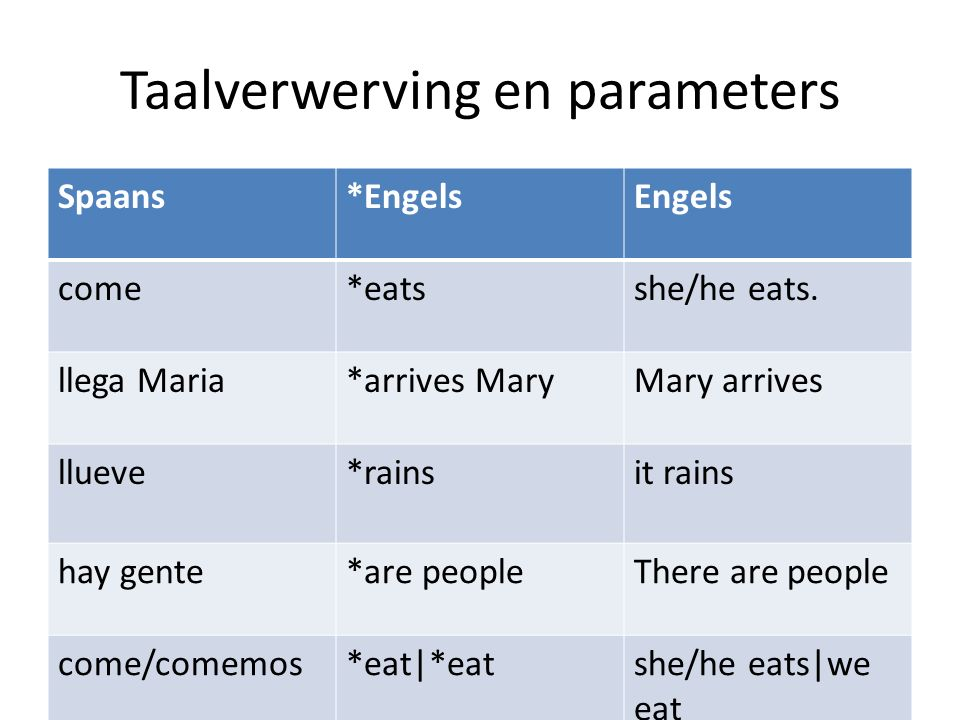 Taalverwerving en parameters