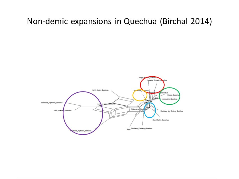 Non-demic expansions in Quechua (Birchal 2014)