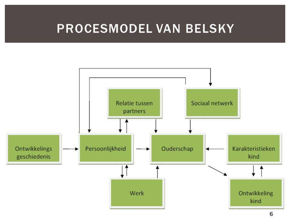 Procesmodel van Belsky