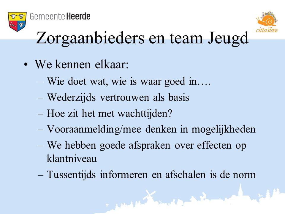 Zorgaanbieders en team Jeugd