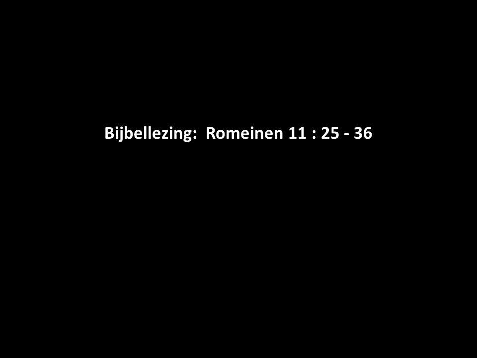 Bijbellezing: Romeinen 11 : 25 - 36