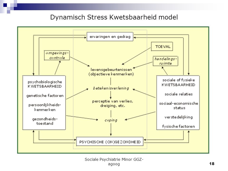 Dynamisch Stress Kwetsbaarheid model