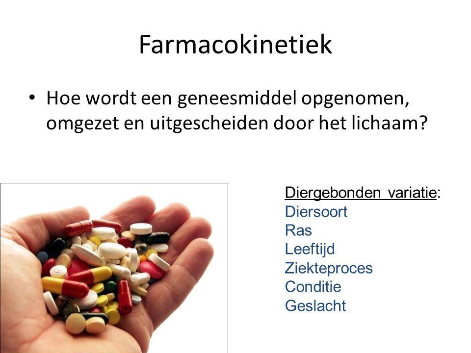 Farmacokinetiek Hoe wordt een geneesmiddel opgenomen, omgezet en uitgescheiden door het lichaam Diergebonden variatie: