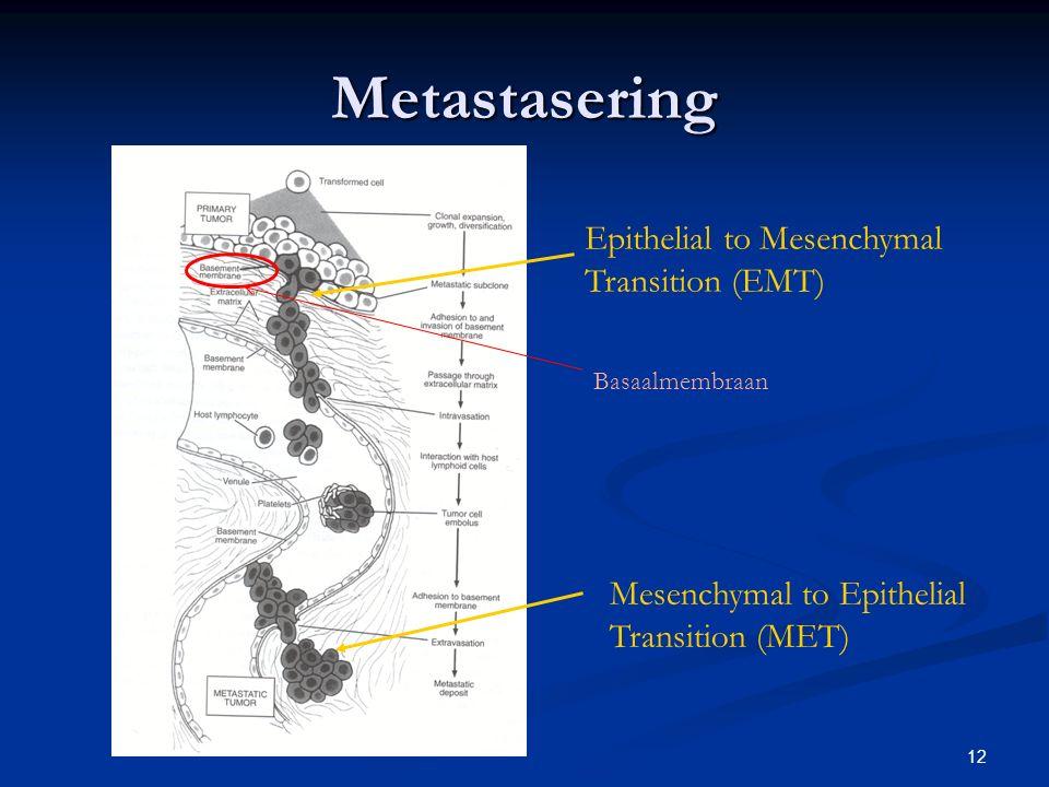 Metastasering Epithelial to Mesenchymal Transition (EMT)