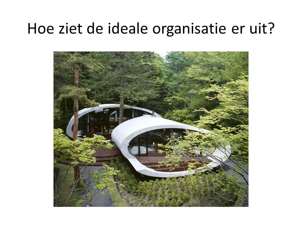 Hoe ziet de ideale organisatie er uit