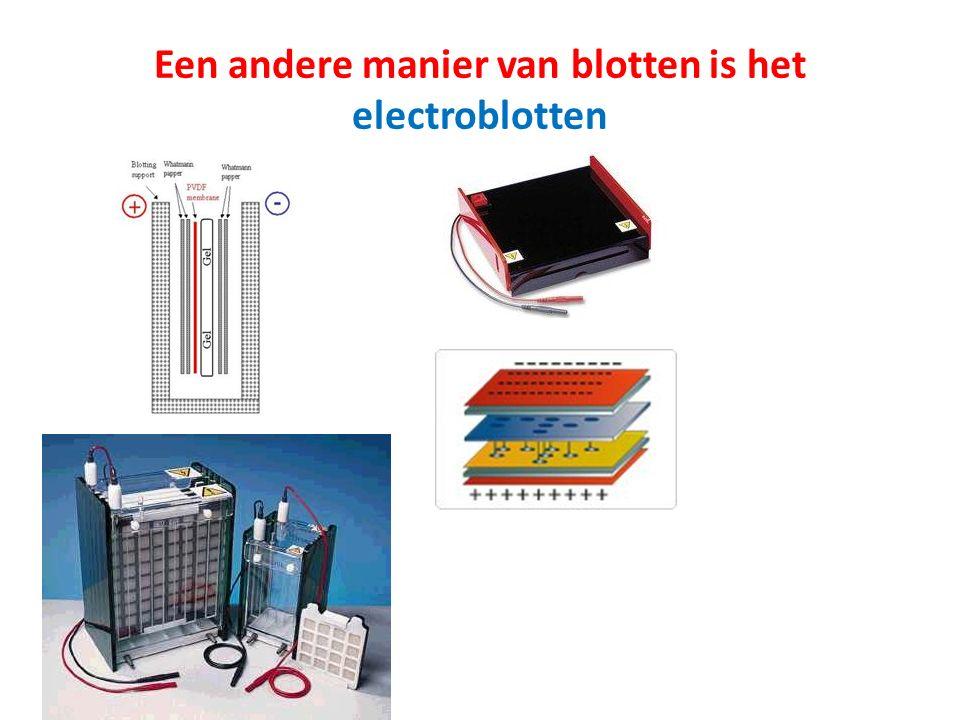 Een andere manier van blotten is het electroblotten