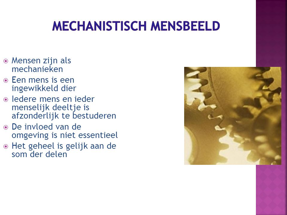 Mechanistisch mensbeeld