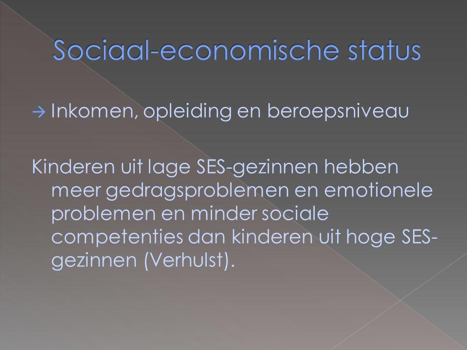 Sociaal-economische status