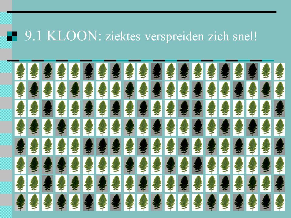 9.1 KLOON: ziektes verspreiden zich snel!
