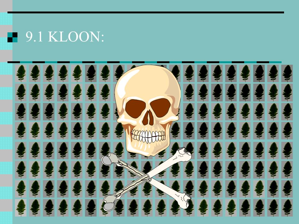 9.1 KLOON:
