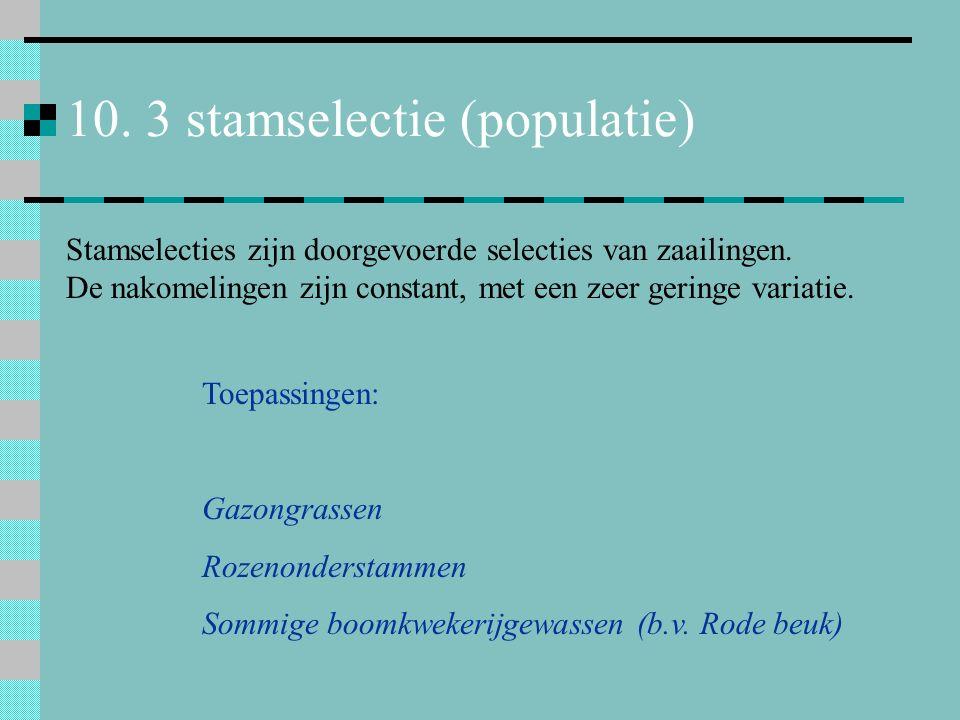 10. 3 stamselectie (populatie)