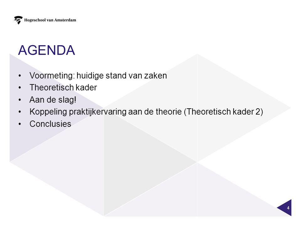 Agenda Voormeting: huidige stand van zaken Theoretisch kader