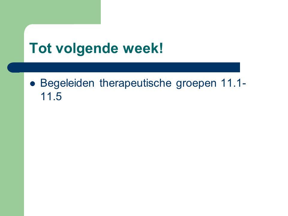 Tot volgende week! Begeleiden therapeutische groepen 11.1-11.5