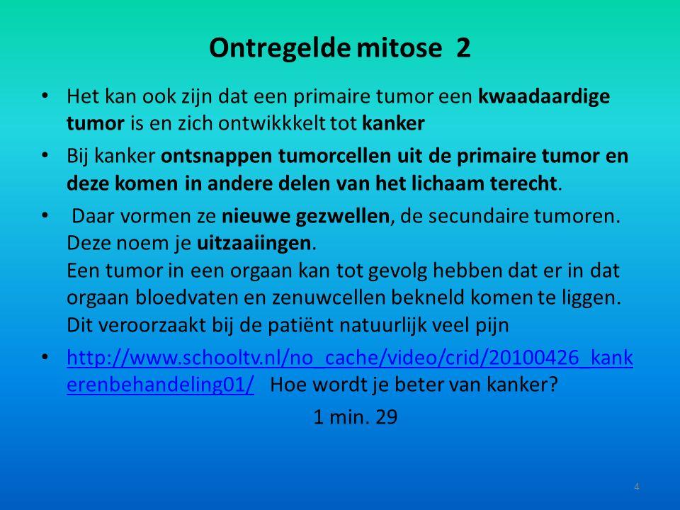 Ontregelde mitose 2 Het kan ook zijn dat een primaire tumor een kwaadaardige tumor is en zich ontwikkkelt tot kanker.