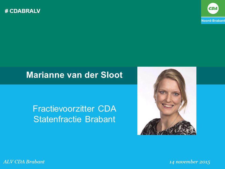 Fractievoorzitter CDA Statenfractie Brabant