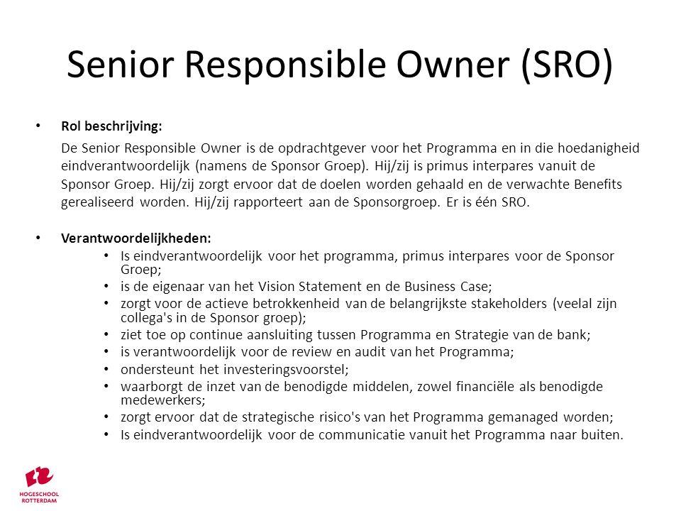 Senior Responsible Owner (SRO)