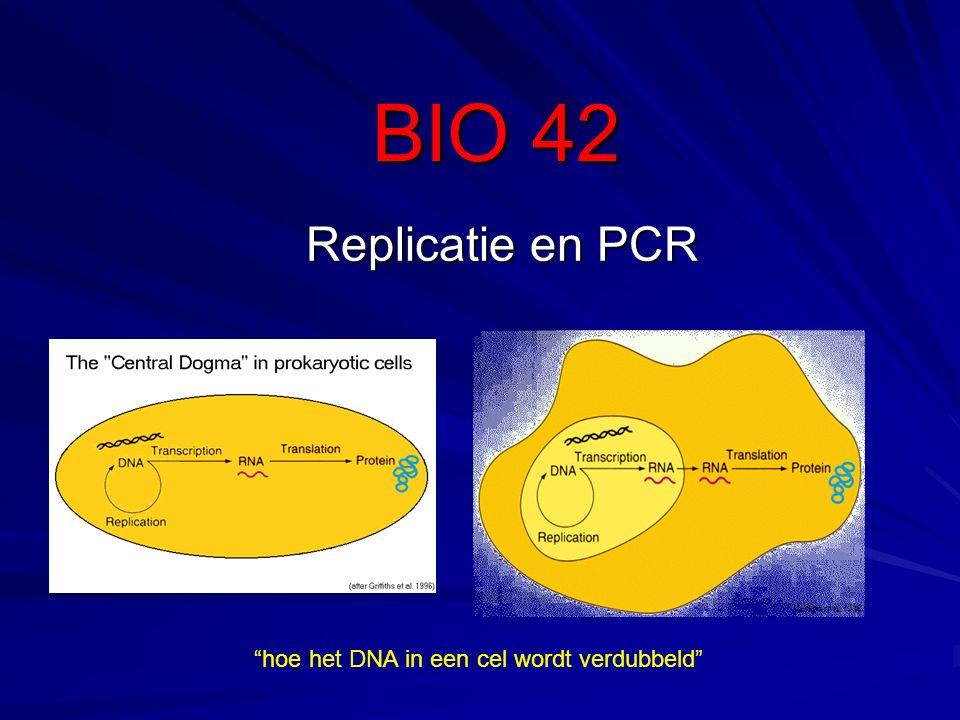 BIO 42 Replicatie en PCR hoe het DNA in een cel wordt verdubbeld