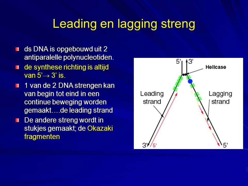 Leading en lagging streng