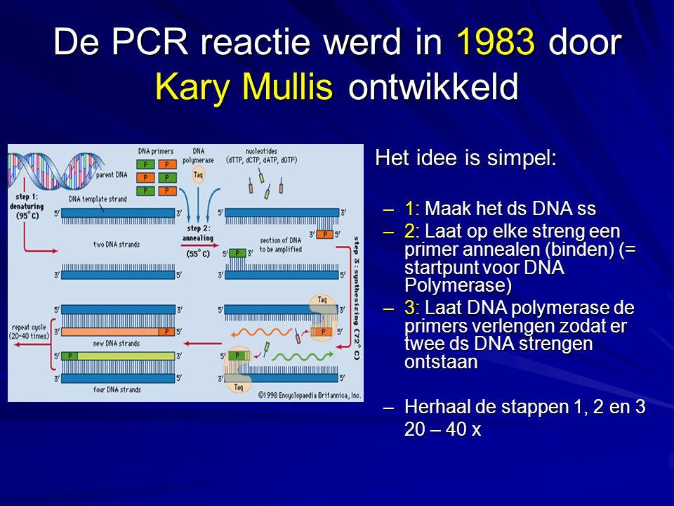 De PCR reactie werd in 1983 door Kary Mullis ontwikkeld