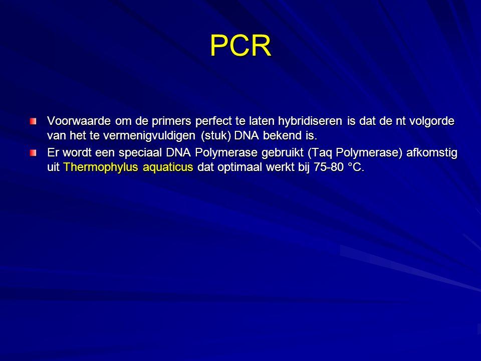 PCR Voorwaarde om de primers perfect te laten hybridiseren is dat de nt volgorde van het te vermenigvuldigen (stuk) DNA bekend is.