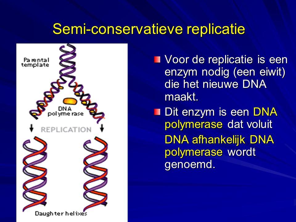 Semi-conservatieve replicatie