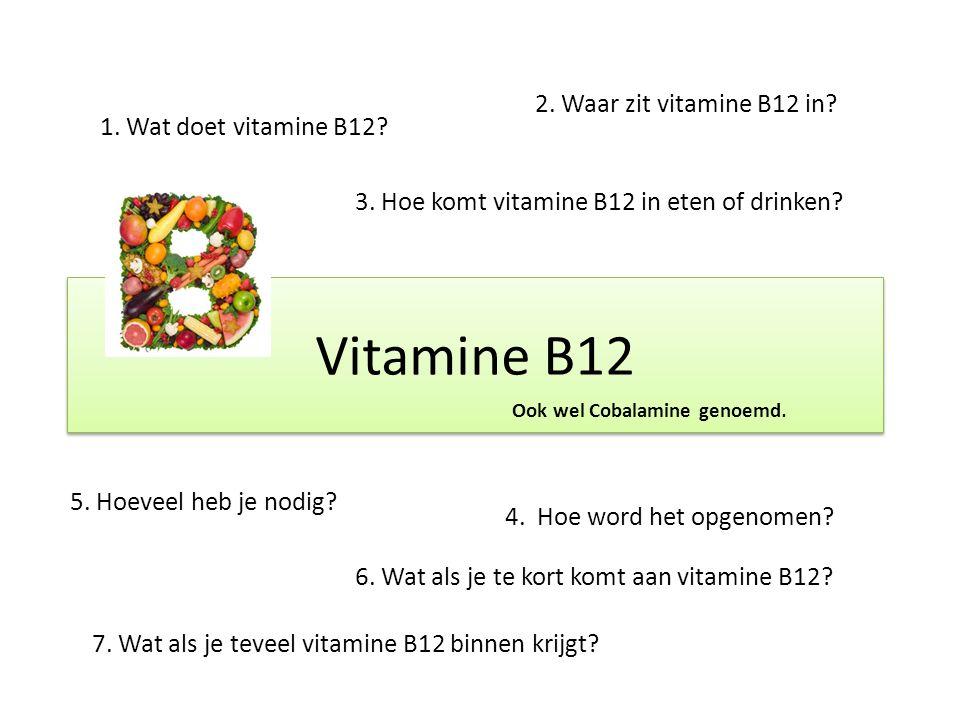 Vitamine B12 2. Waar zit vitamine B12 in 1. Wat doet vitamine B12