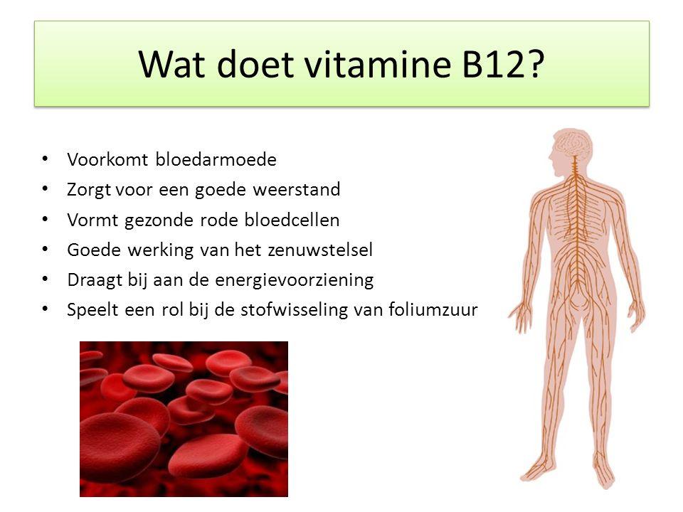 Wat doet vitamine B12 Voorkomt bloedarmoede