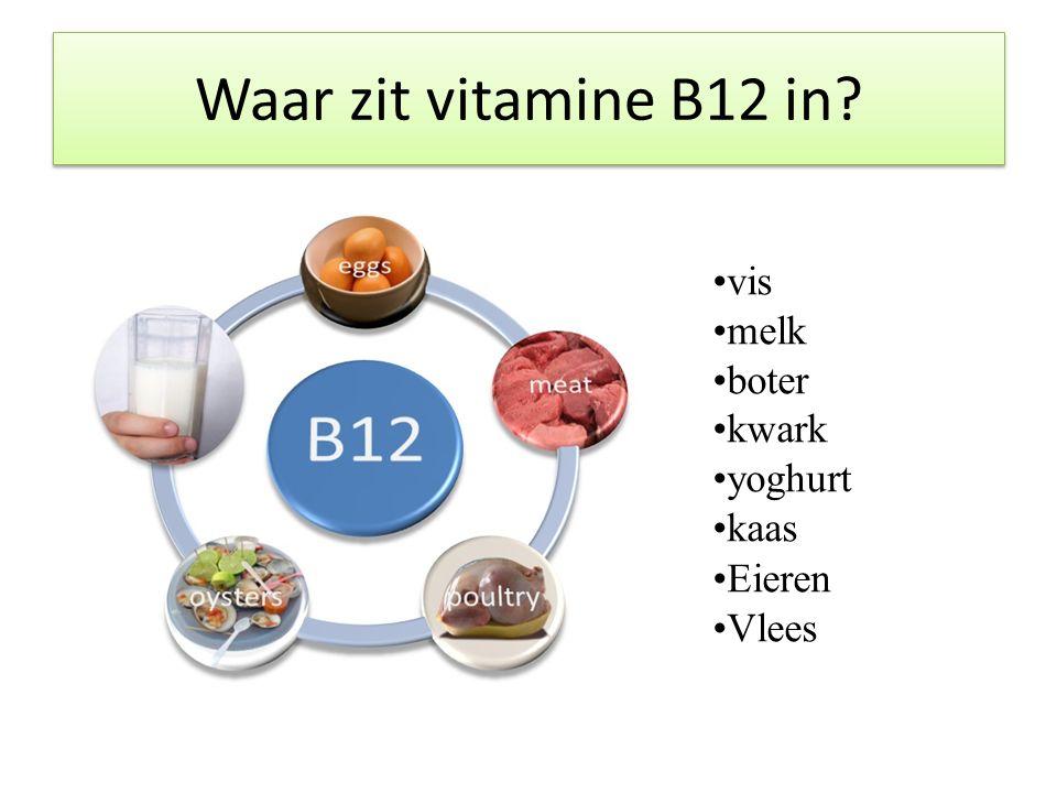 Waar zit vitamine B12 in vis melk boter kwark yoghurt kaas Eieren