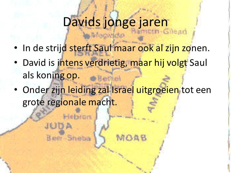 Davids jonge jaren In de strijd sterft Saul maar ook al zijn zonen.