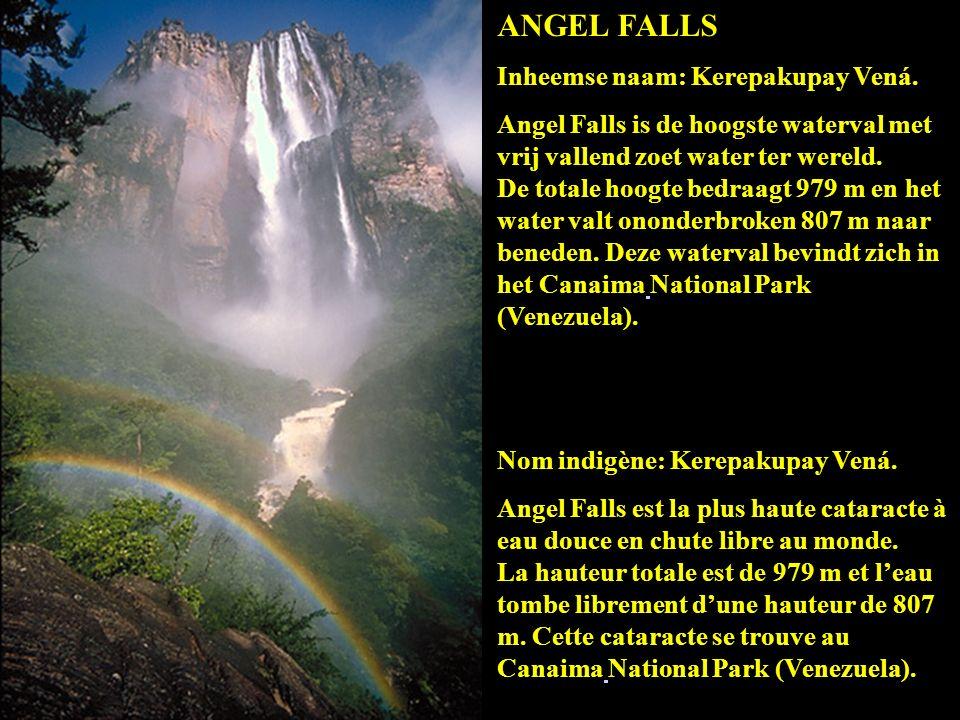 ANGEL FALLS Inheemse naam: Kerepakupay Vená.