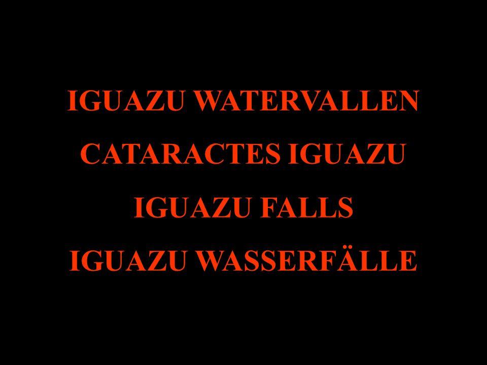 IGUAZU WATERVALLEN CATARACTES IGUAZU IGUAZU FALLS IGUAZU WASSERFÄLLE