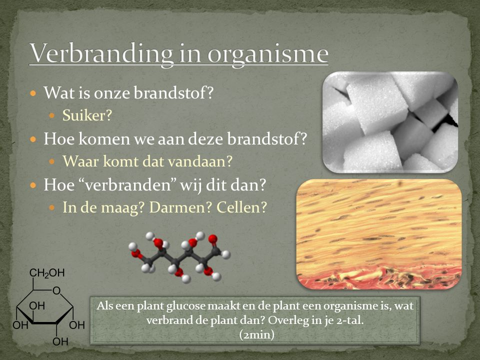 Verbranding in organisme