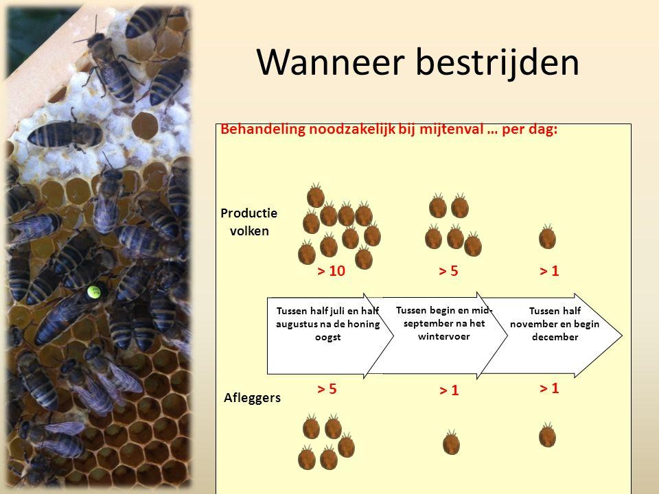 Wanneer bestrijden Bienen Wirtschaftsvölker