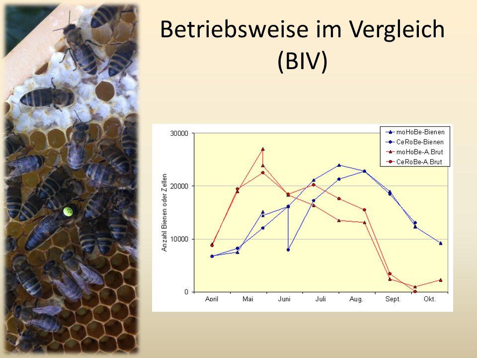 Betriebsweise im Vergleich (BIV)
