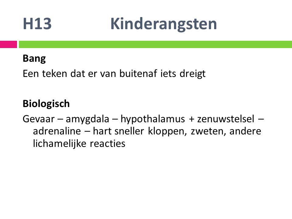 H13 Kinderangsten Bang Een teken dat er van buitenaf iets dreigt
