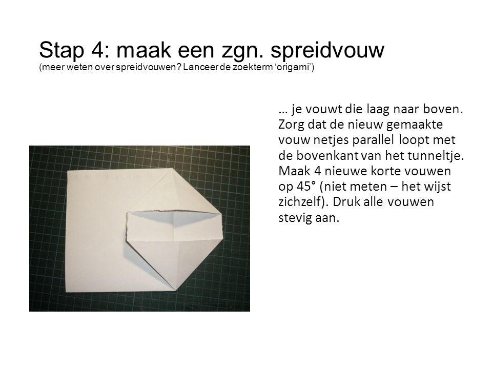 Stap 4: maak een zgn. spreidvouw (meer weten over spreidvouwen