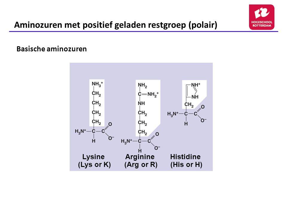 Aminozuren met positief geladen restgroep (polair)