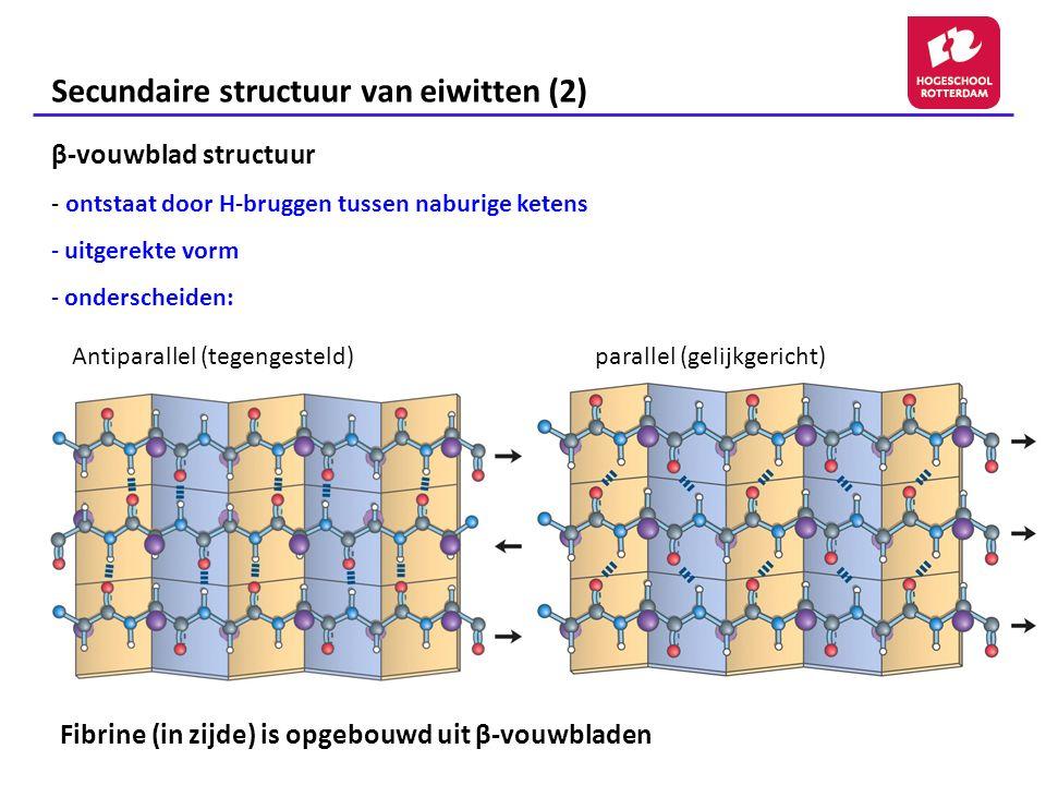 Secundaire structuur van eiwitten (2)