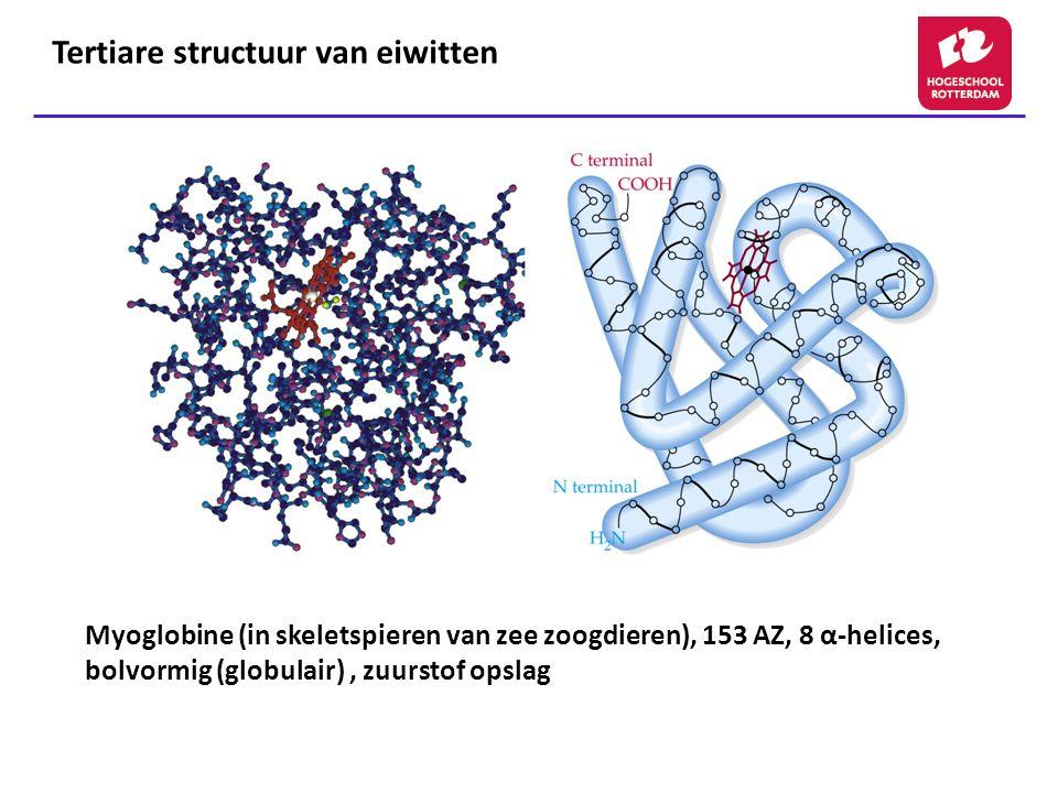 Tertiare structuur van eiwitten
