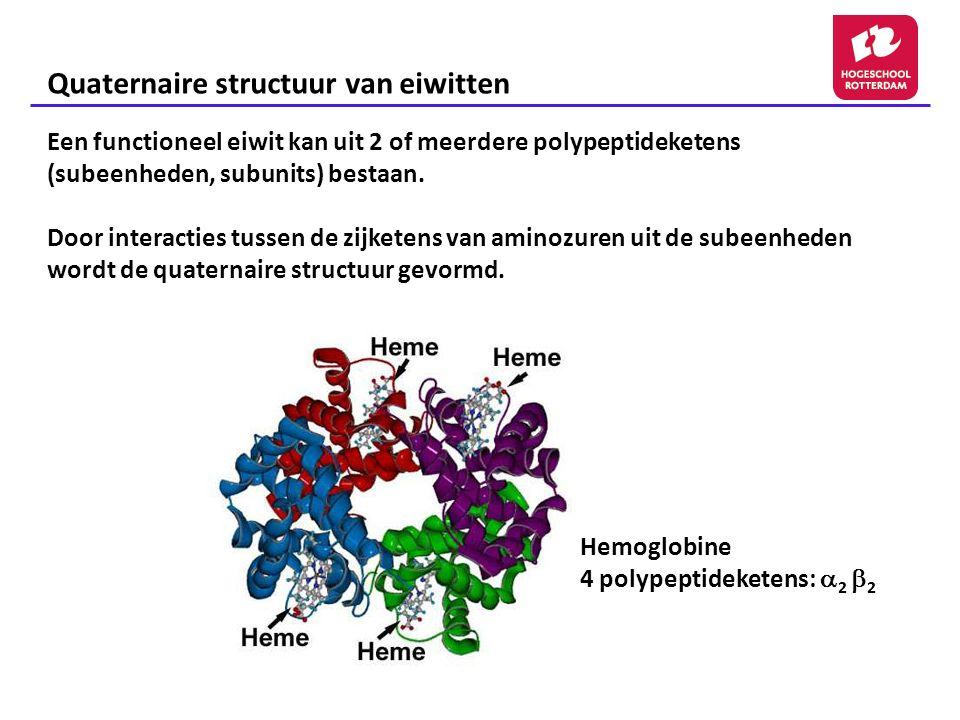Quaternaire structuur van eiwitten